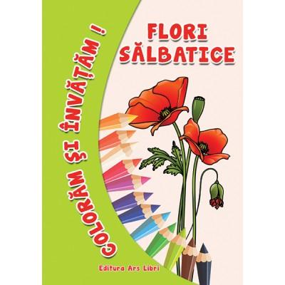 Colorăm şi învăţăm - Flori de câmp