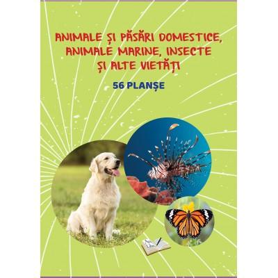 Păsări și animale domestice, animale marine, insecte și alte vietăți - 56 planșe