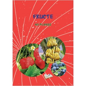 Fructe - 40 planșe